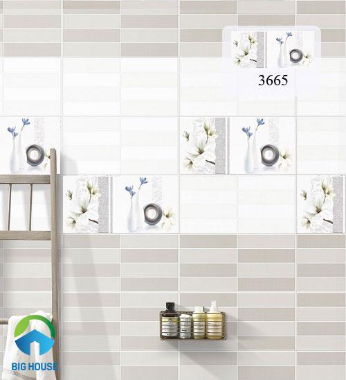 mẫu gạch ốp tường 30x60 3