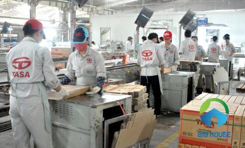 Công ty gạch Tasa 4