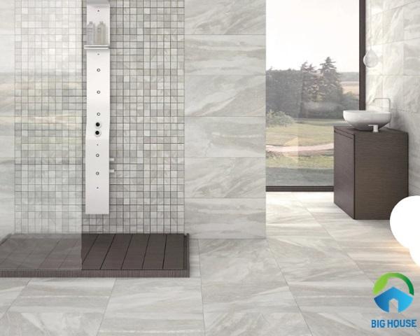 gạch lát nhà vệ sinh 30x60 19
