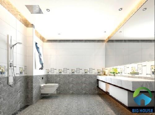 gạch ốp nhà vệ sinh tasa 2