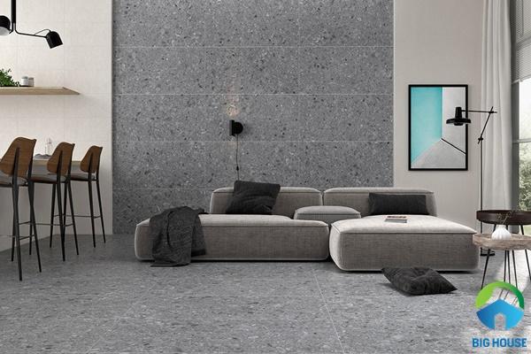 gạch ốp tường phòng khách 30x60 17
