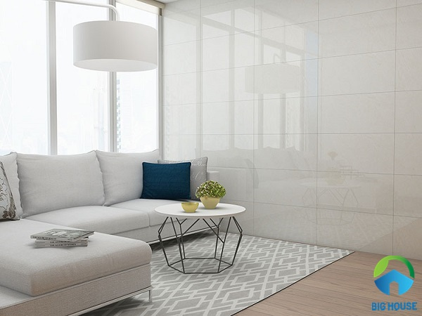 gạch ốp tường phòng khách nhà ống 15