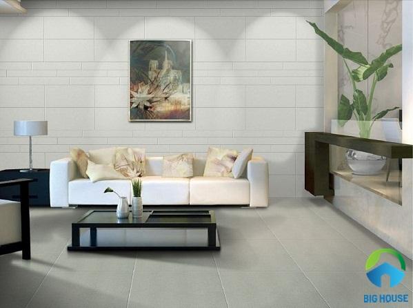 gạch ốp tường phòng khách nhà ống 19