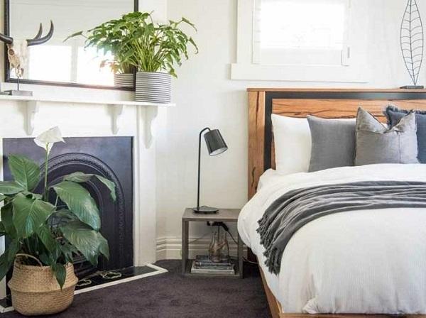 Không đặt chậu cây hoặc chậu hoa trong phòng ngủ
