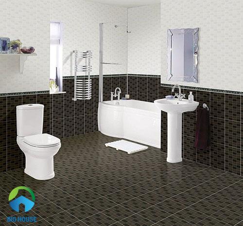 gạch ốp nhà vệ sinh 30x45 5