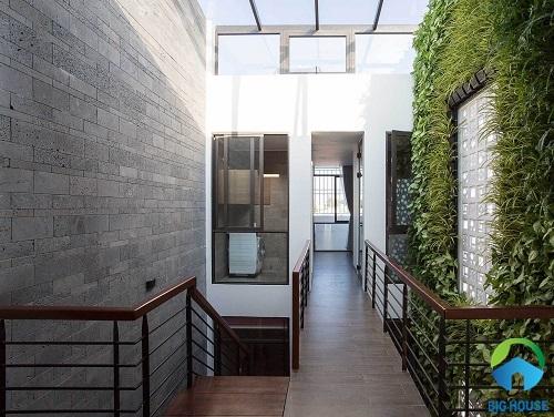 999+ mẫu gạch ốp tường giếng trời đẹp kèm báo giá chi tiết
