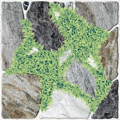 Gạch lát sân vườn Tasa 60x60 5825