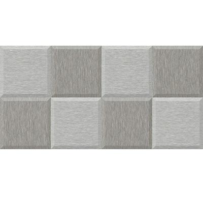 Gạch ốp tường Tasa 30x60 1622