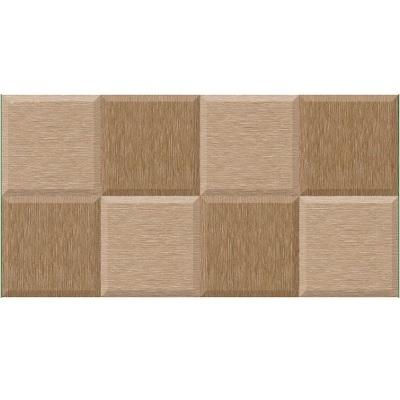 Gạch ốp tường Tasa 30×60 1625