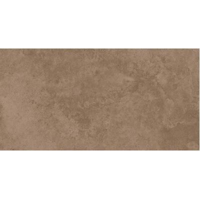 Gạch ốp tường Tasa 30×60 2704